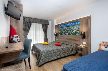 Hotel Alpen - Skirama Dolomiti Adamello Brenta - Paganella