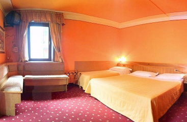 Hotel Alle Alpi ***